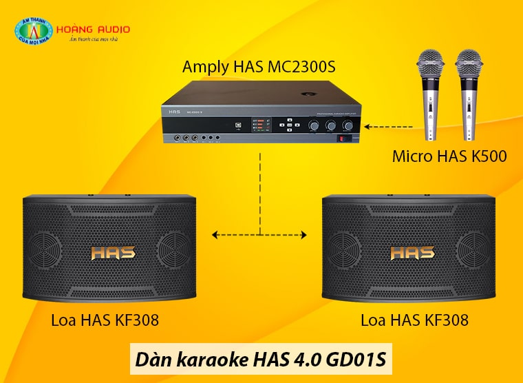 dan-karaoke-has-gd01s